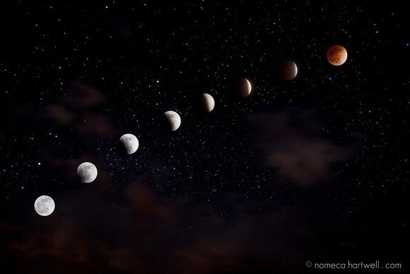 Starry Eclipse